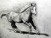hestebilde